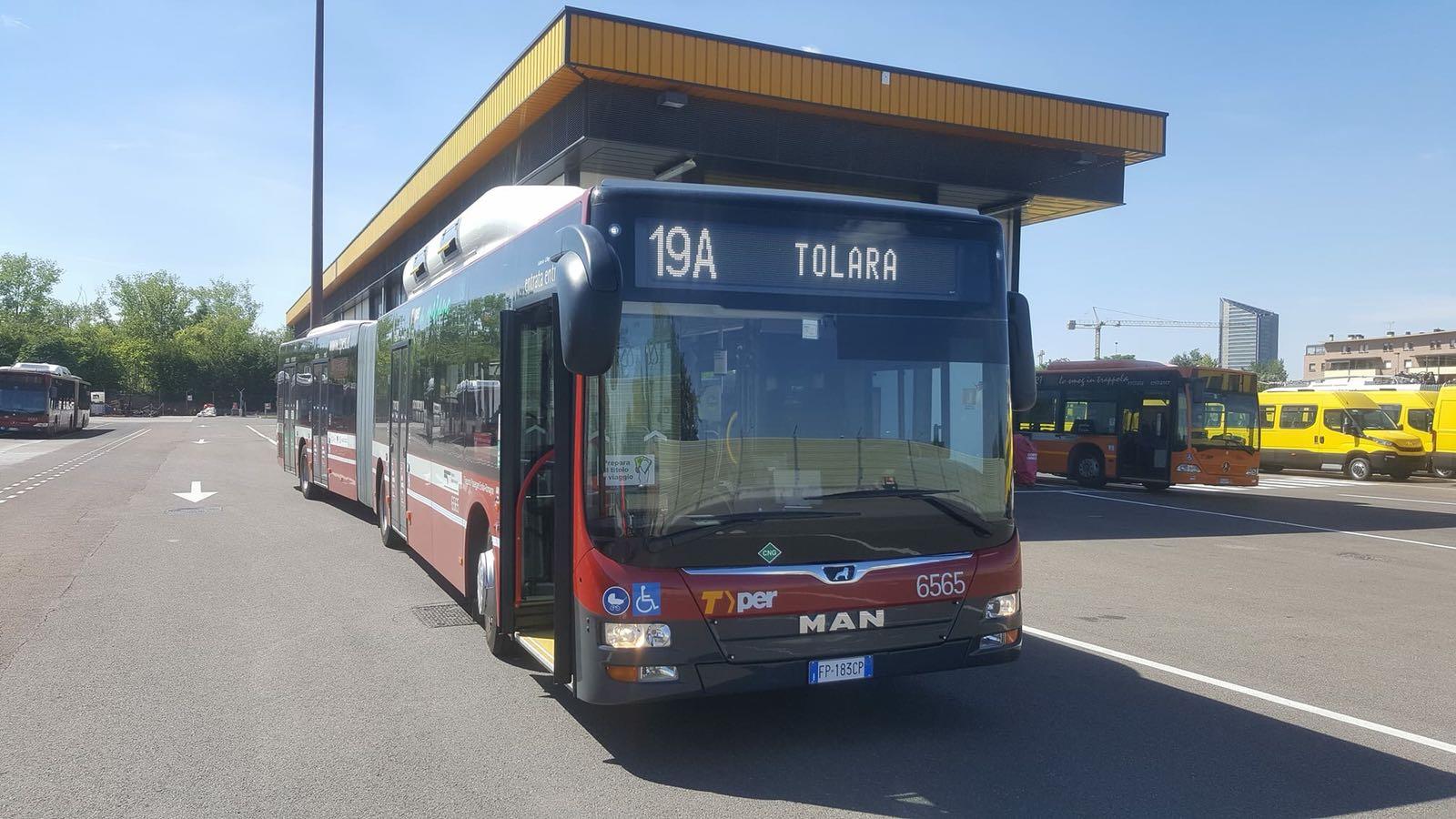 Ufficio Verde Pubblico Comune Di Bologna : Autobus 19: nuova corsa notturna da e per bologna comune di ozzano